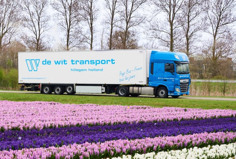 De Wit Transport bollen